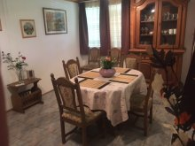 Accommodation Abádszalók, Darwin Guesthouse