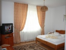 Accommodation Ticvaniu Mare, Claudiu B&B