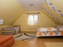 Accommodation Tiszakeszi, Zsófia Guesthouse
