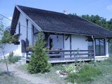 Nyaraló Țițești, Casa Bughea Ház