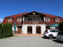 Accommodation Barajul Zetea, Tichet de vacanță, Palace Guesthouse