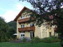 Accommodation Brădețelu, Foenix Guesthouse