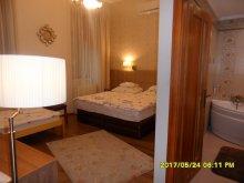 Accommodation Szeged, Kálmán House