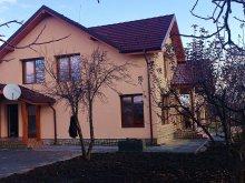 Szállás Scărlătești, Casa Ioana Panzió