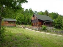 Accommodation Izvoare, Spierer Piroska Guesthouse