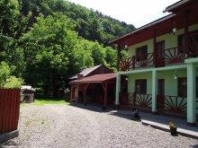 Accommodation Bucin (Praid), Niko Guesthouse