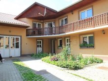 Accommodation Cechești, Nyikó Parti Guesthouse