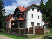 Villa Buda (Berzunți), Villa Atriolum
