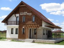 Accommodation Galoșpetreu, Soli Deo Gloria Guesthouse