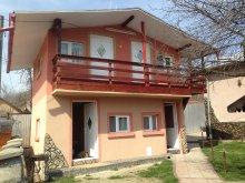 Accommodation Bălilești (Tigveni), Alex Villa