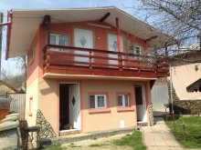 Vilă Zamfirești (Cotmeana), Vila Alex