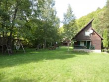 Chalet Rupea, Gyerő Attila I. Guesthouse