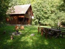 Guesthouse Mercheașa, Gyerő Attila II. Guesthouse