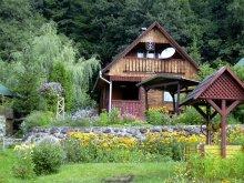 Accommodation Băile Homorod Ski Slope, Kerestély Katalin Guesthouse