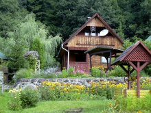 Accommodation Capalnita (Căpâlnița), Kerestély Katalin Guesthouse