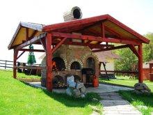 Bed & breakfast Targu Mures (Târgu Mureș), Héthatár Pension