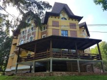 Bed & breakfast Ghioroc, Mayumi Guesthouse