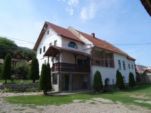Guesthouse Pătrușești, Panoráma Pension