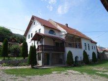 Vendégház Boroskrakkó (Cricău), Panoráma Panzió
