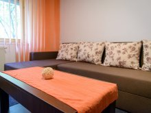 Apartament Bisoca, Apartament Luceafărul 2