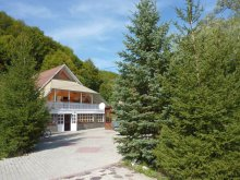 Guesthouse Mateiaș, Simon Csilla 1. Guesthouse