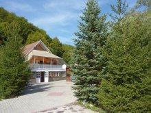 Guesthouse Mercheașa, Simon Csilla 1. Guesthouse