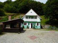 Guesthouse Mercheașa, Simon Csilla II. Guesthouse
