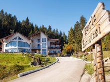 Package Suceava county, Perla Bucovinei Guesthouse