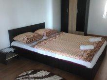 Accommodation Perșani, Aranyvesszo Guesthouse