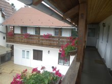 Accommodation Cămărașu, Katalin Guesthouse