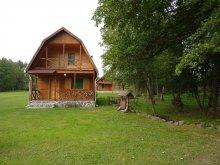 Cazare Șicasău, Casele de Oaspeți Sztojanov Miklós I-III.