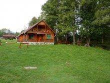 Guesthouse Șicasău, Sztojanov Miklós IV. Guesthouse