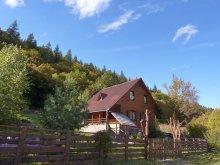 Accommodation Șicasău, Tóparti Guesthouse