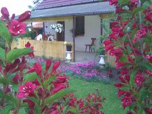 Guesthouse Kalocsa, Holdfeny Holiday Home