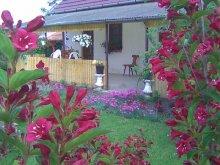 Guesthouse Szeged, Holdfeny Holiday Home