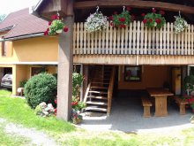 Guesthouse Albesti (Albești), Muskátli Guesthouse