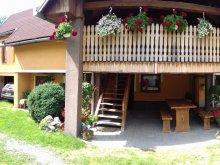 Guesthouse Lupeni, Muskátli Guesthouse