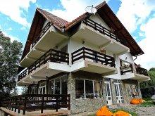 Accommodation Braşov county, Iulia's Guesthouse
