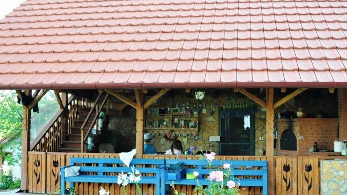 Casa de oaspeți RoseHip Hill Valea Târnei