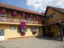 Bed & breakfast Praid, Dorina Guesthouse
