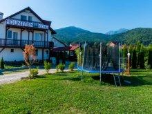 Panzió Szásztyukos (Ticușu Vechi), Mountain King Panzió