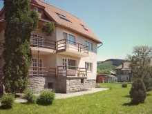 Accommodation Valea Verzei, Apolka Guesthouse