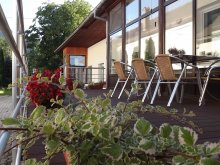 Bed & breakfast Trestioara (Chiliile), Katalin Guesthouse