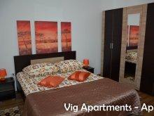 Cazare Aldești, Apartament Vig