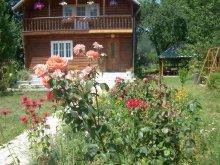 Accommodation Muntele Mic Ski Slope, Venus Guesthouse
