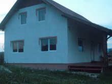 Accommodation Perșani, Gyurkalak Chalet