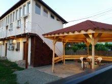 Vilă Osmancea, Vila Pestisorul Costinesti