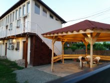 Villa Cernavodă, Hostel Pestisorul Costinesti