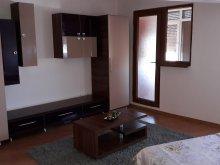 Accommodation Cuza Vodă (Salcia Tudor), Rhea Apartment
