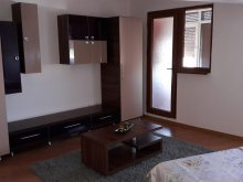 Cazare Lunca (C.A. Rosetti), Apartament Rhea